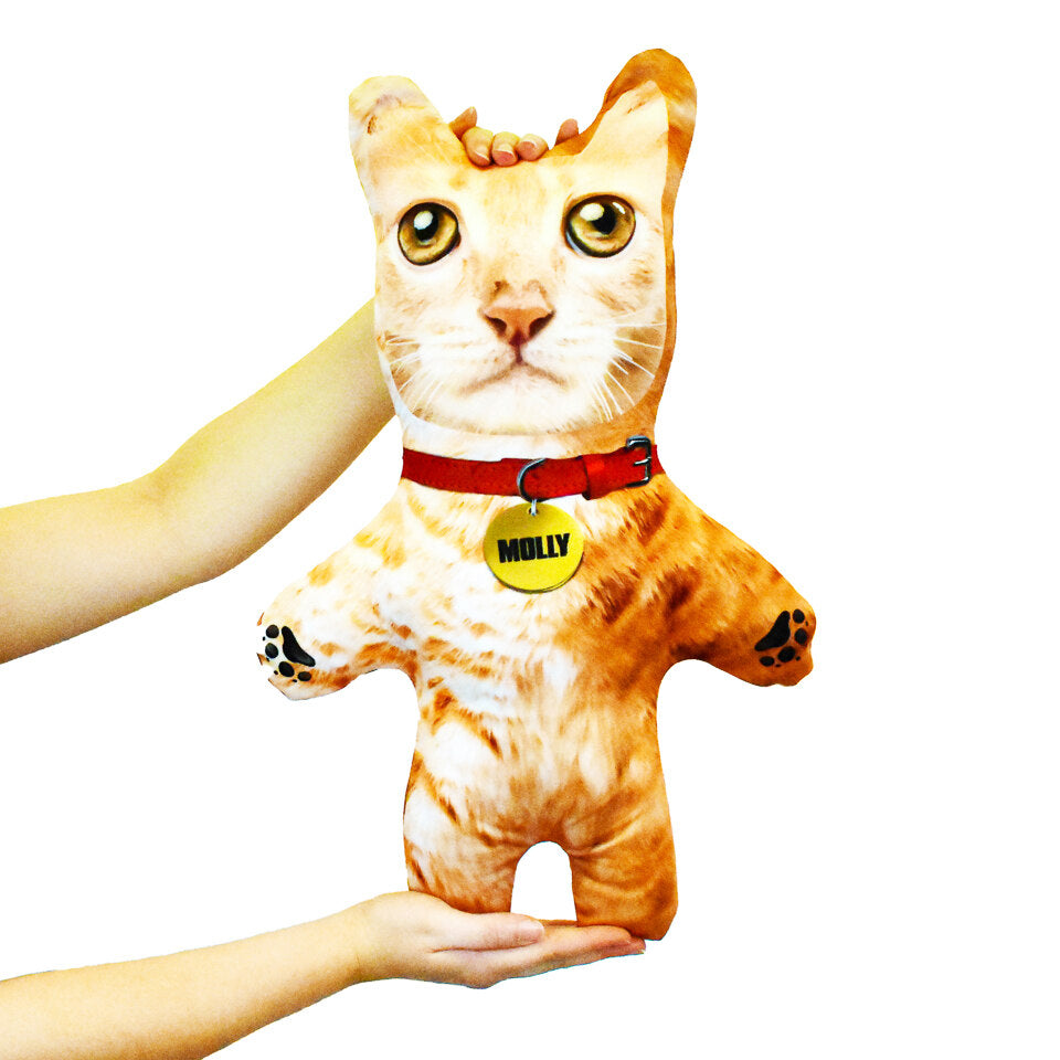 Pet Mini Me Ginger Cat - Personalised Doll