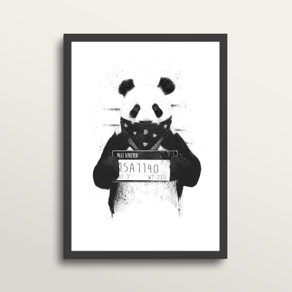 Bad Panda - Art Print - in medium A3 black frame