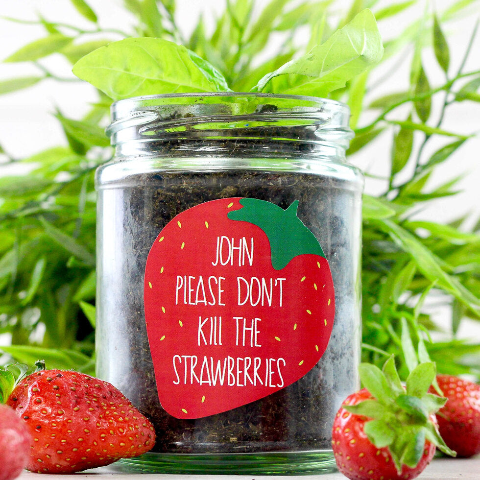 Personalised Grow Your Own Plant Jar - Strawberry