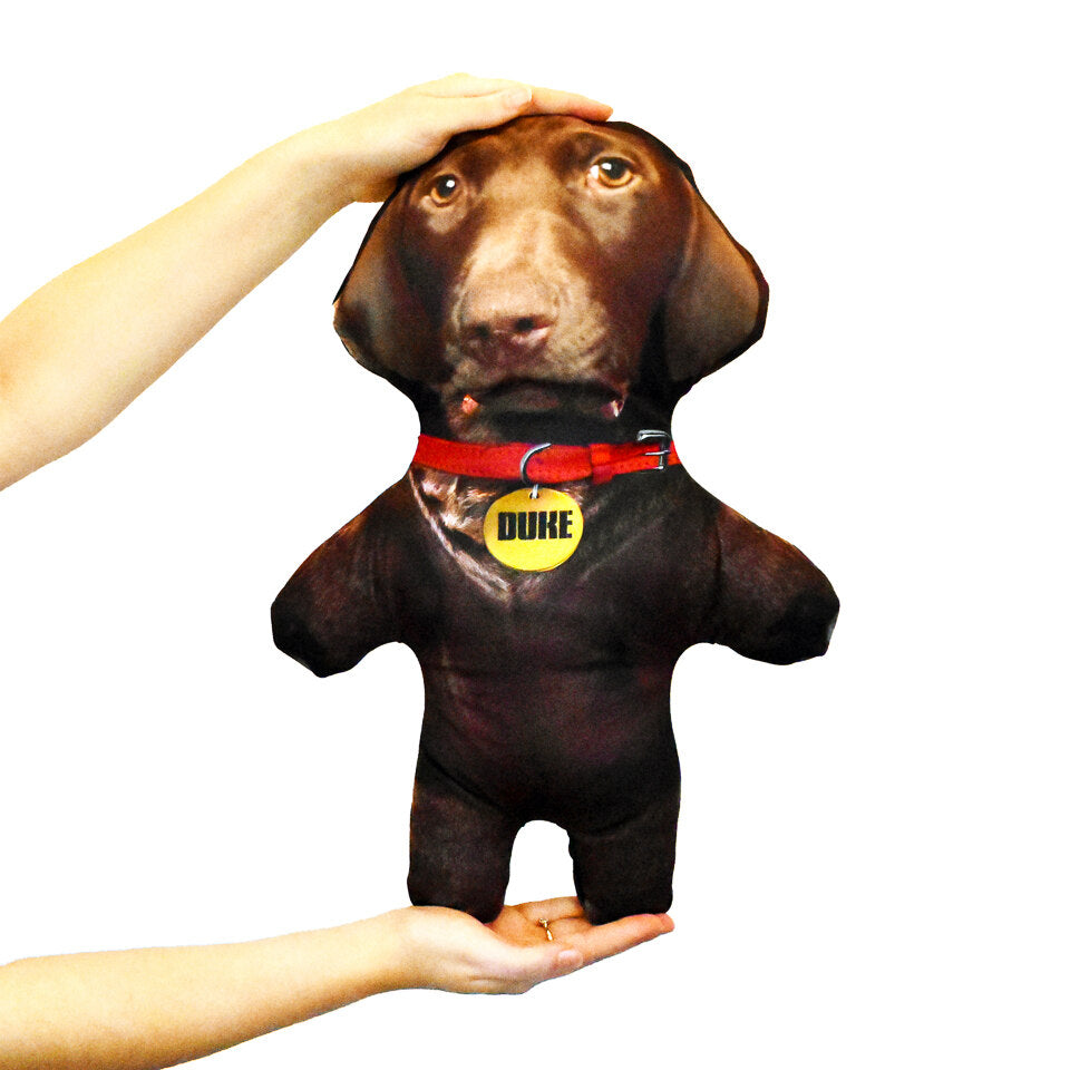Pet Mini Me Brown Dog - Personalised Doll