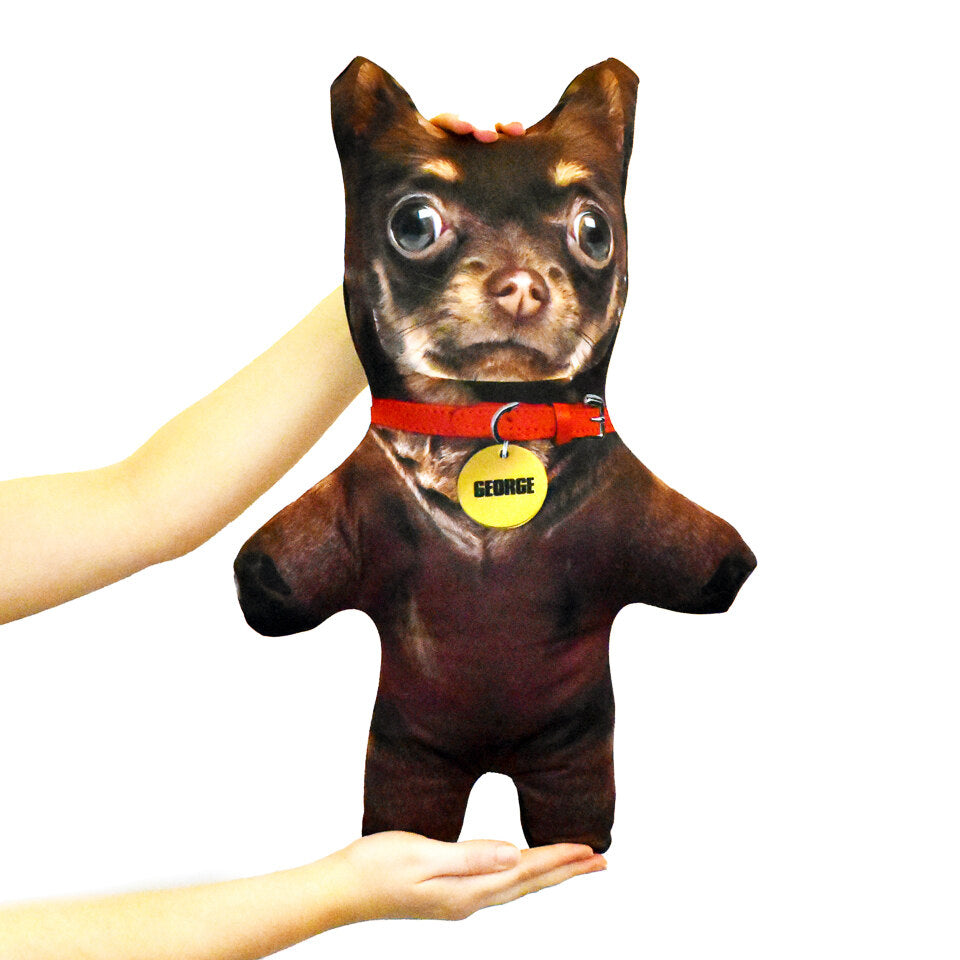 Pet Mini Me Brown Dog - Personalised Doll - Shape 1