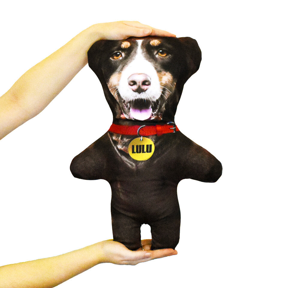Pet Mini Me Brown Dog - Personalised Doll - Shape 2