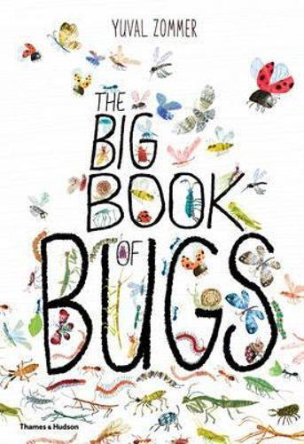 Big Book of Bugs, The (Hard Cover) Phoniex