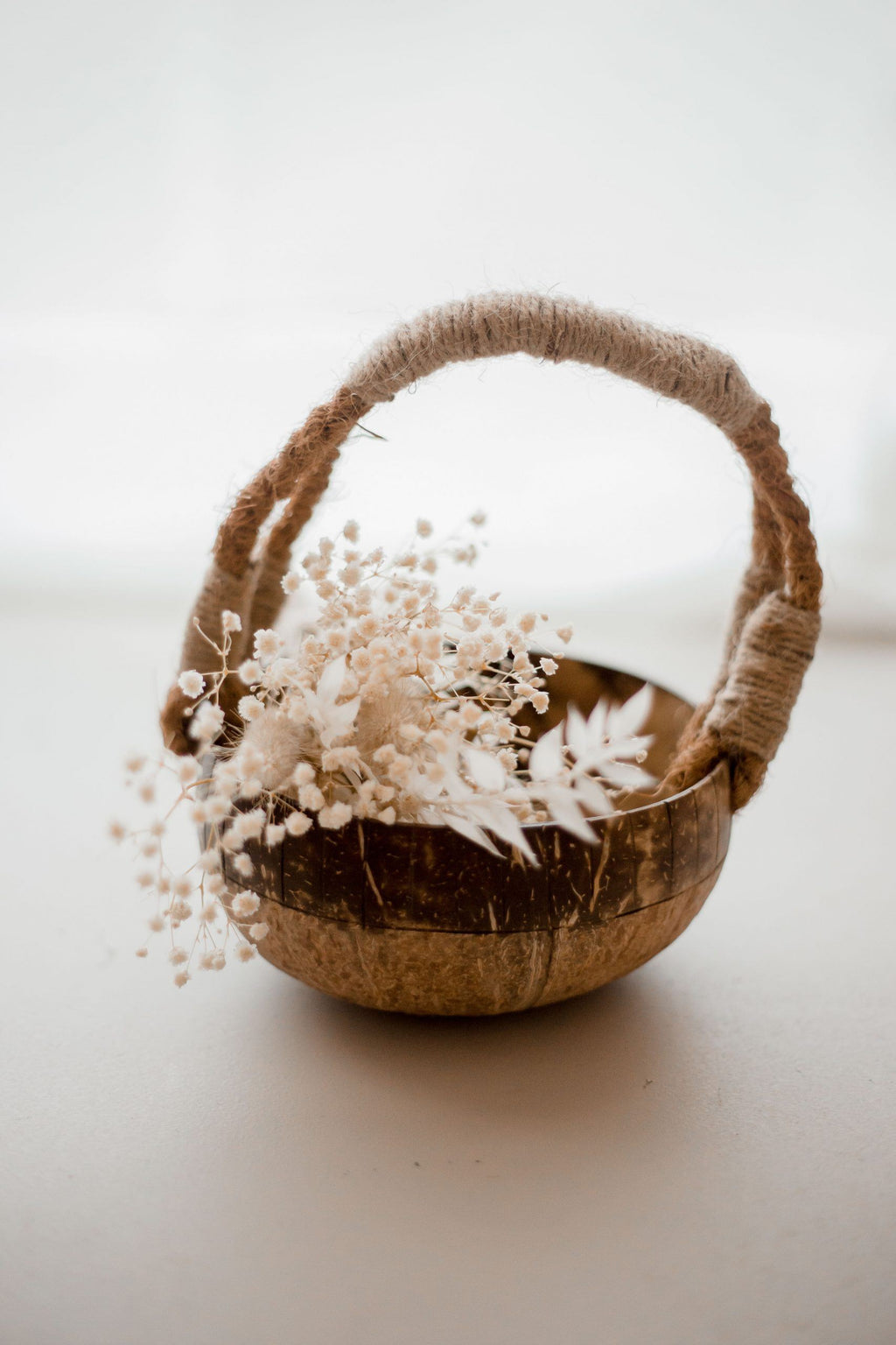 Coconut Basket (Arriving Early Feb) QToys