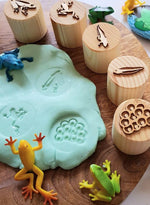 Load image into Gallery viewer, Frog Lifecycle Playdough Stamps Beadie Bugs