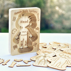 Human Body Systems - A 'sliced' Wooden Human Layered Puzzle Plyful