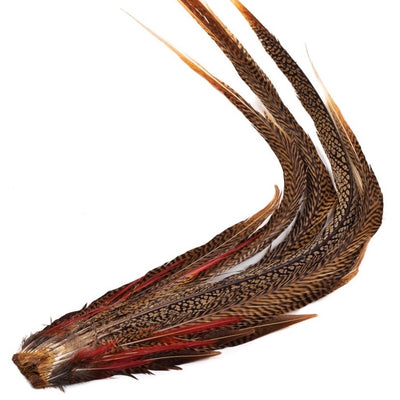 GOLDEN PHEASANT COMP. TAIL CLUMP