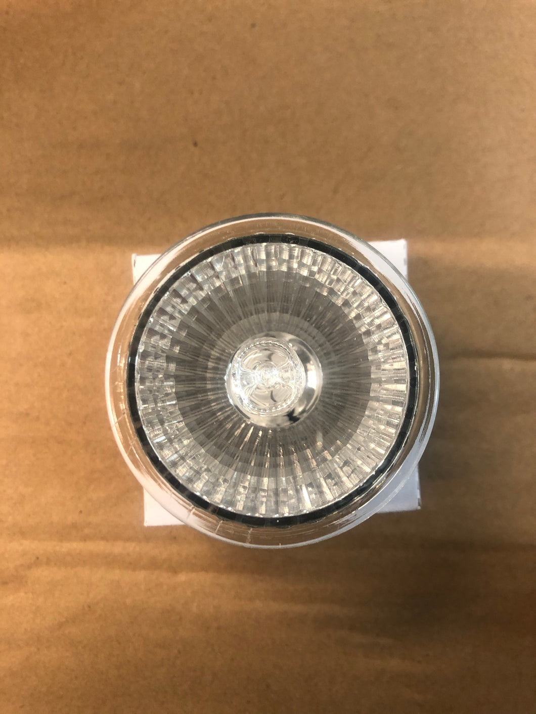 Replacement Globes - Melt Warmers