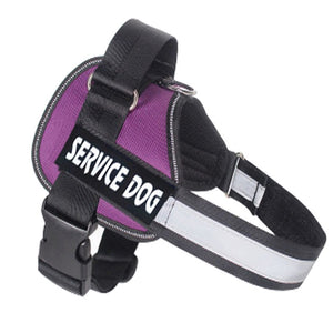 Personalized Reflective Harness
