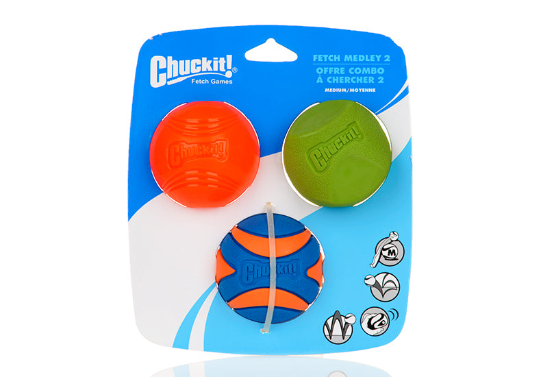 Squeaky Chew Toy