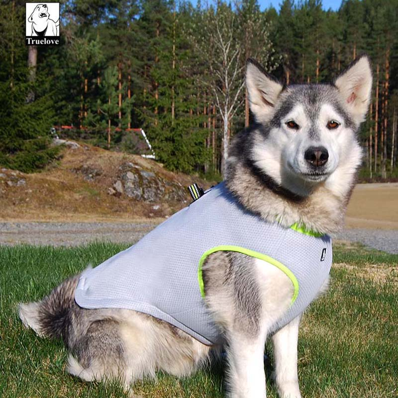 Cool Vest Harness