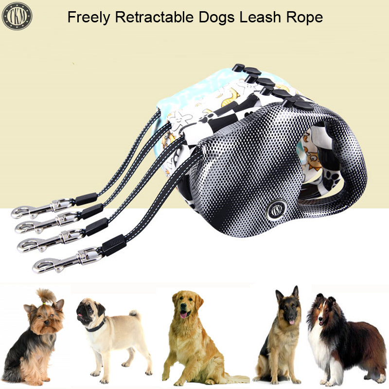 5m Retractable Leash