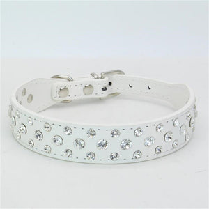 Personalized Collars