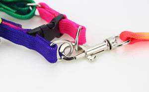 Colorful Rainbow Leash