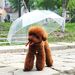Waterproof Umbrella
