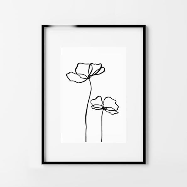 Tall Poppy Lines. Black