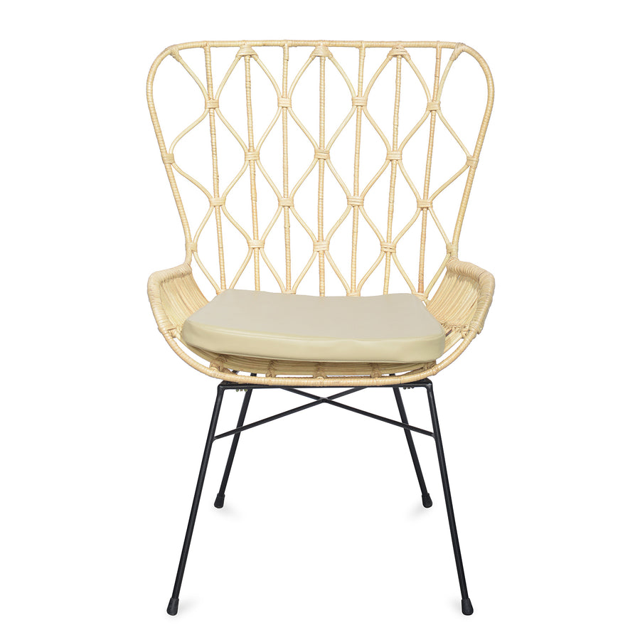 Ariel Occasional Chair (Brown)