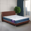 Vibrant Box Top 6 + 2 inch King Bed Spring Mattress (White & Blue)