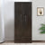 Harrier 2 Door Wardrobe (Wenge)