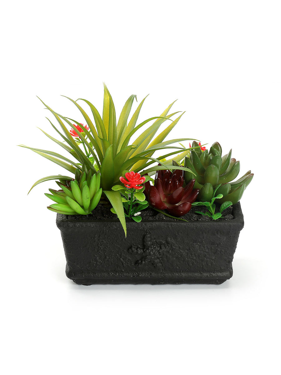 Crate Potted Plant (Green)