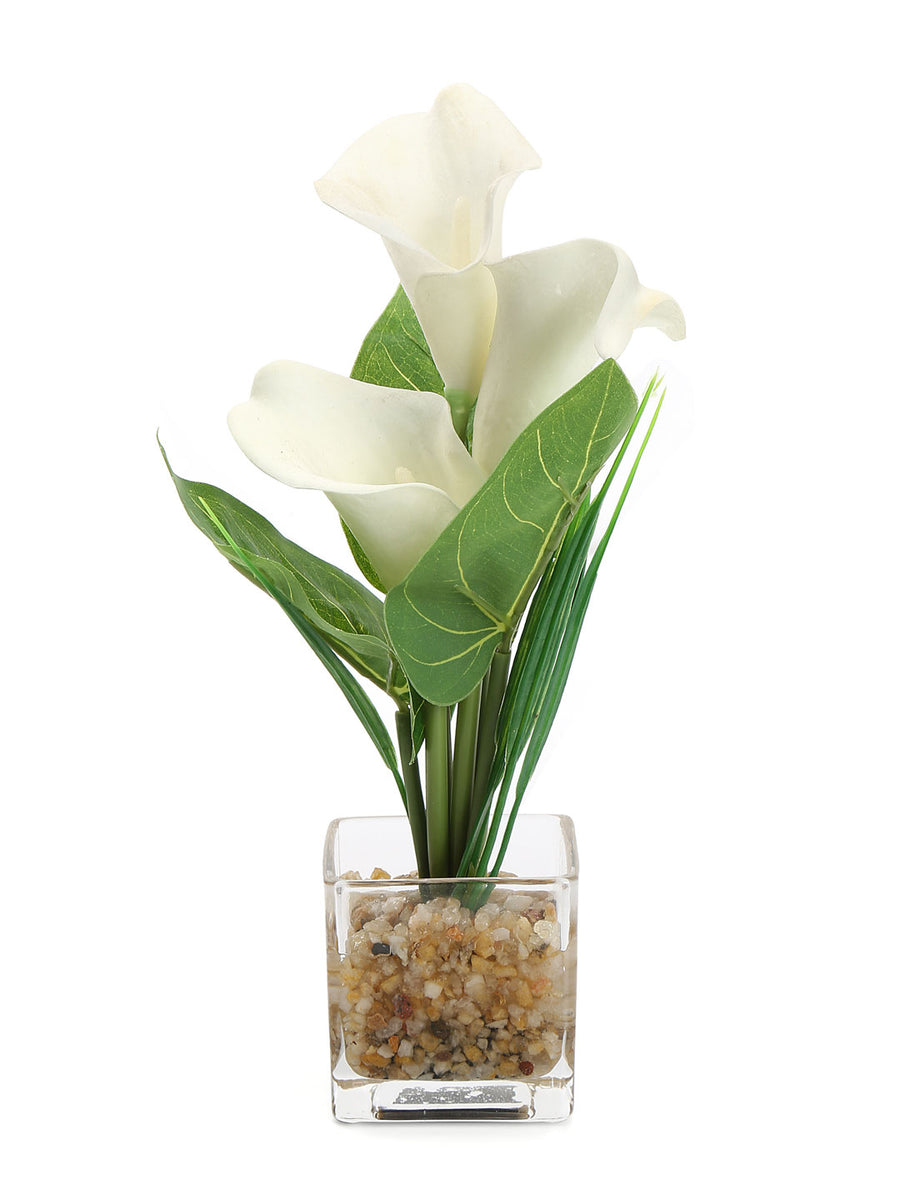 Lilly Glass Potted Plant (White)