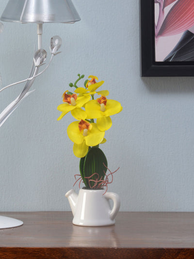 Orchid Tepot Potted Plant (Yellow)
