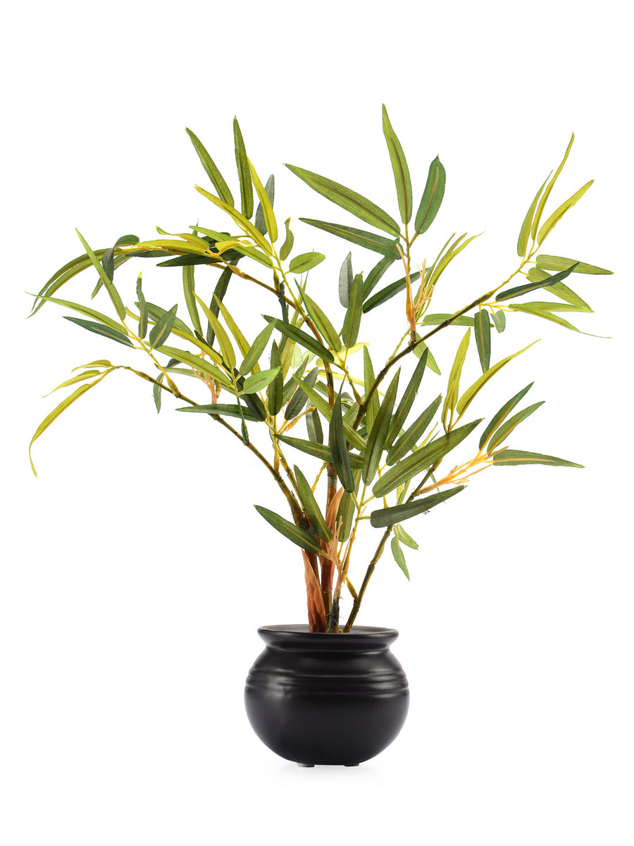 Bamboo Potted Plant (Green)