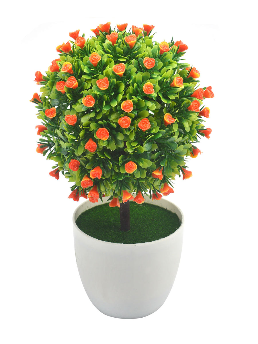 Boxwood Flora Potted Plant (Orange)
