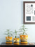 Dandelion Planters Set of 3 (Mustard)