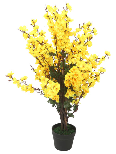 Forsythia Tree (Yellow)