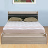 Toya Queen Bed With Box Storage (Beige & Brown)