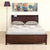 Wanstead Queen Bed with Headboard Storage & USB Port (Brown)