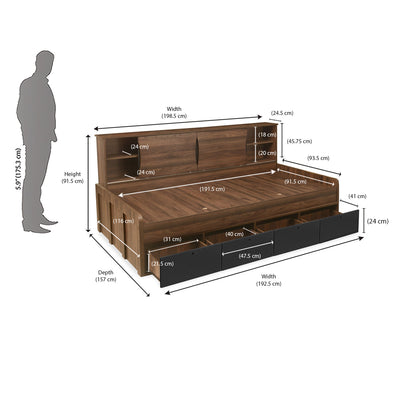 Avenger Single Kids Bed (Walnut)