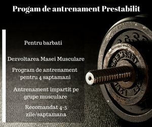 Program de antrenament Masa Musculara - World of Fitness