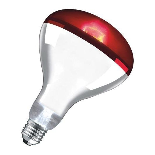 Doghealth Infared Heat Lamp With Eco Switch