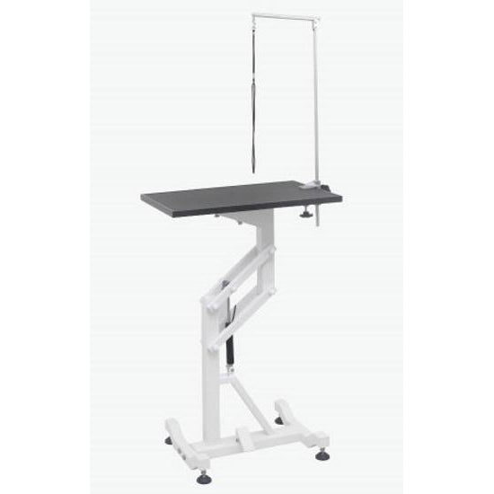 Aeolus Air Lift Dog Grooming Table - FT-838-REC
