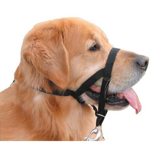 Halti Dog Headcollar Leather Padded  - Black