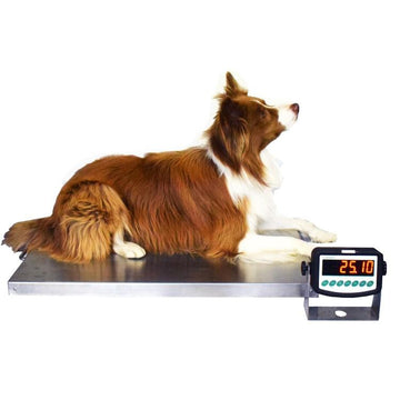 Marsden Large Dog Veterinary Weighing Scale V-200