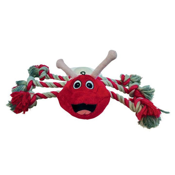 Gor Reef Tug Bug Dog Toy GR06