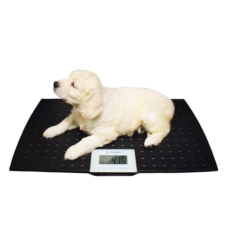 Marsden Small  or Medium Dog Veterinary Weighing Scale V-100