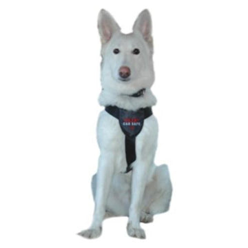 Clix CarSafe Dog Harness