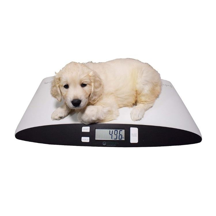 Marsden Small Pet Veterinary Weighing Scale V-25