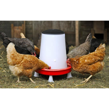 Ultimate Indoor Chicken Feeder - 12kg  HABC0251