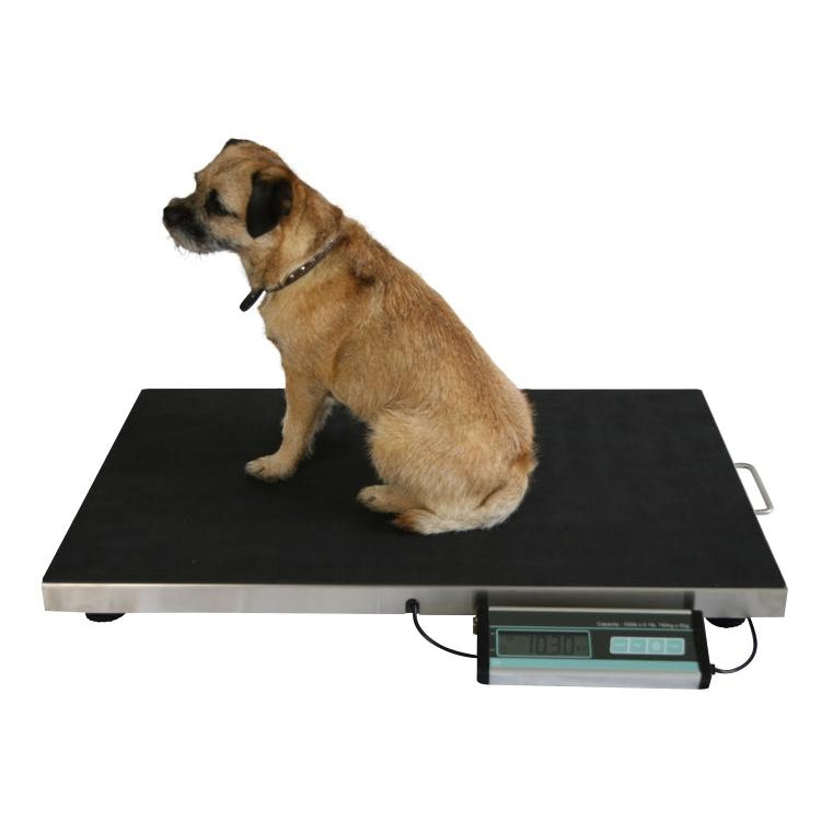Marsden Large Dog Veterinary Weighing Scale V-150