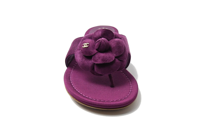 Thong Suede Calf Purple