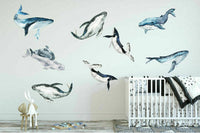 Baby Whale Wall Decal Kids Nursery Decor Boys Room Sticker Art Mural Gift DIY