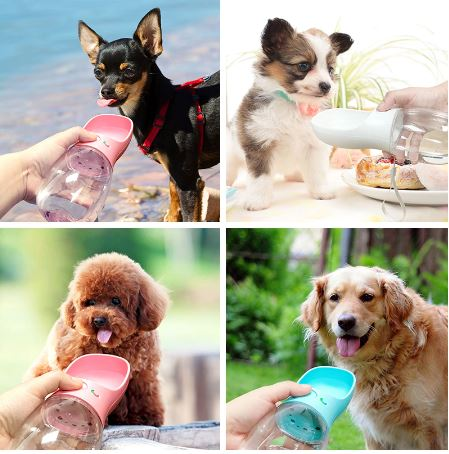 Portable Pet Dog Water Bottle For Small Large Dogs Travel Puppy Cat picktookshop.myshopify.com [sale] [online]