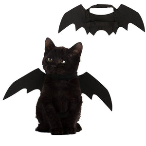 Halloween Bat Costume For Dogs & Cats