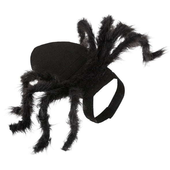 Halloween Black Spider Costume For Dogs & Cats picktookshop.myshopify.com [sale] [online]