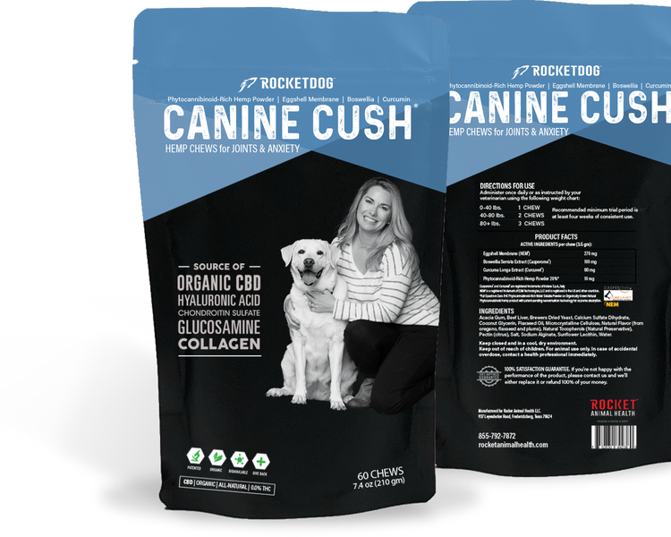 New Product Helps Reduce Joint Inflammation, Pain & Soreness in Dogs